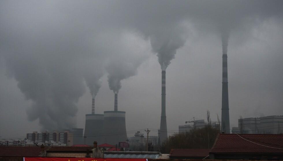FARLIG: Kull bidrar med forurensning. En av forskerne bak en ny studie sier at luftforurensning er en større folkehelserisiko enn røyking. Foto: Greg Baker / AFP / NTB Scanpix