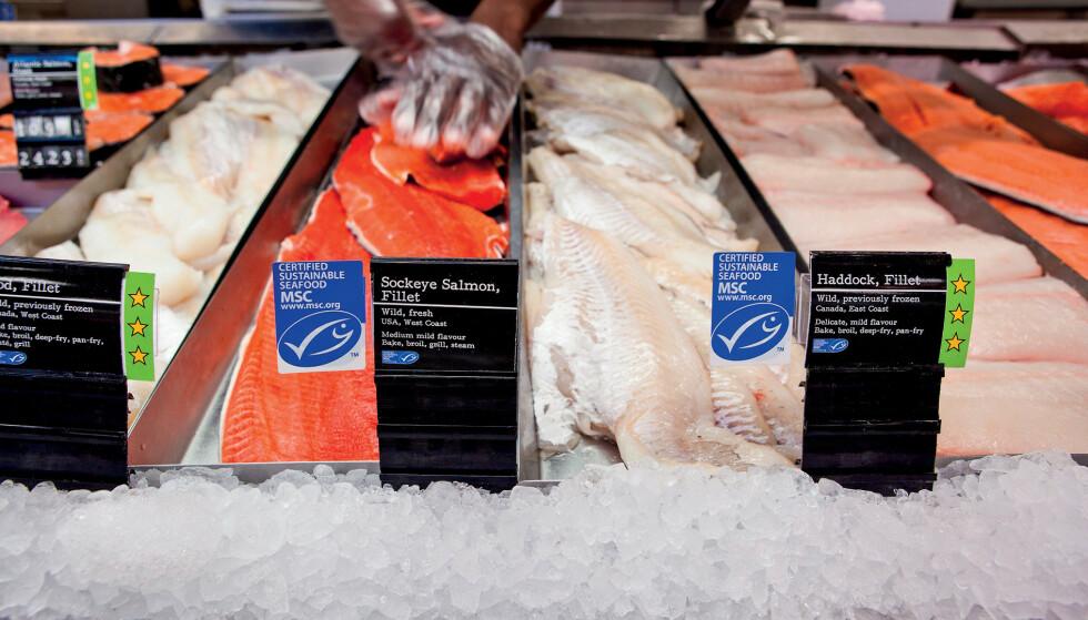 MILJØ-MERKET: Norsk sjømat som har blitt produsert under ulovlige arbeidsforhold har blitt solgt som «bærekraftig, miljømerket sjømat». Foto: MSC