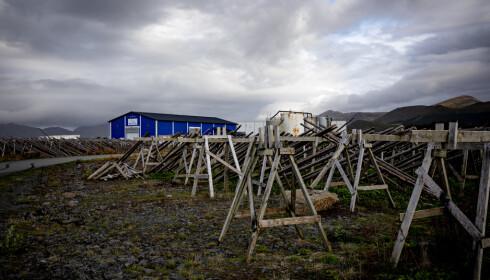 TOMME HJELLER: Hos Stocco AS står fiskehjellene tomme før neste sesong. Foto: Nina Hansen / DAGBLADET