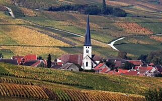 Franske vinprodusenter krever erstatning for USA-toll