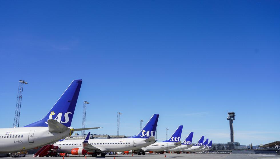 FULL STOPP: SAS-fly på langtidsparkering på Oslo lufthavn Gardermoen. Åpninger og luker forsegles med med teip, det monteres «remove before flight»-tags og motorene dekkes til. Foto: Håkon Mosvold Larsen, NTB Scanpix.