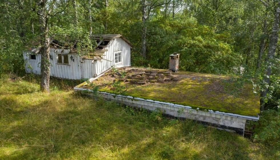 MODERNISERINGSBEHOV: I salgsoppgaven oppgis byggeåret på hytta å være 1942. Objektet ligger på et høydedrag - med sjøutsikt mot vest. Fotograf: Tor Lie / Torlie.no
