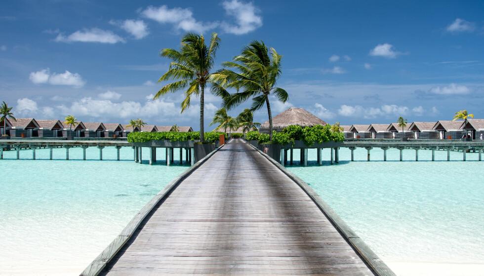 PERLE: Den private øya Niyama på Maldivene er blant stedene man kan nyte i full i full ensomhet. Foto: NTB Scanpix