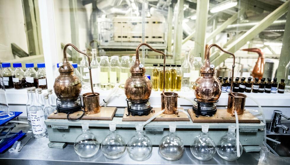 LABORATORIET: Gutta bak destilleriet startet i 2015 med ønske om å lage akevitt basert på tradisjonelle norske medisinplanter. Foto: Christian Roth Christensen / Dagbladet