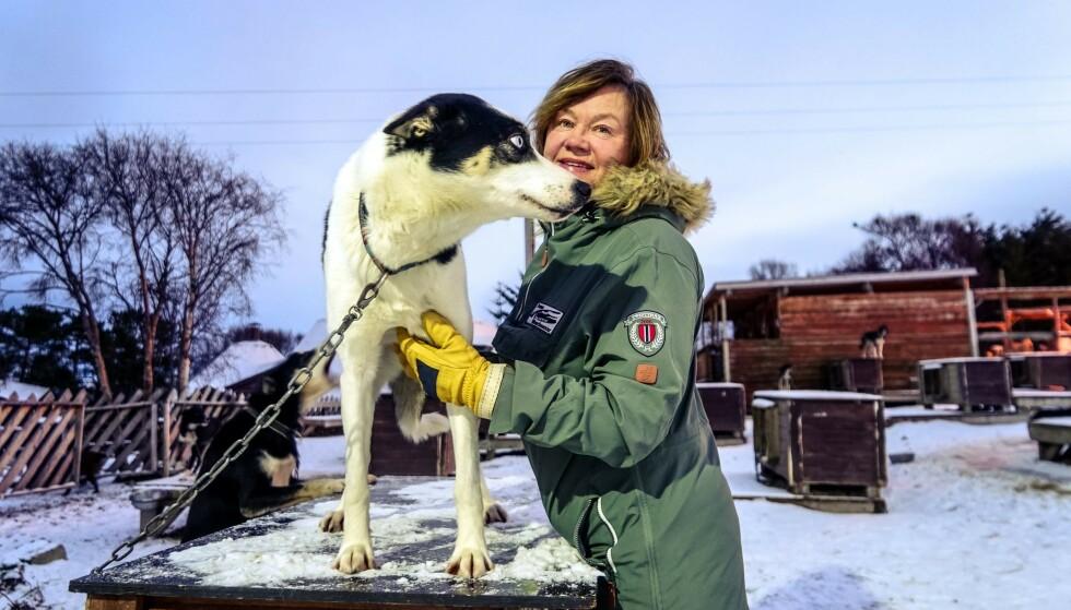STILLE: Vanligvis er det hektisk aktivitet ved Tromsø Villmarksenter på denne tiden. I år får Tove Sørensen feire jul med familien for første gang på mange år. Foto: Gintare Turskyte