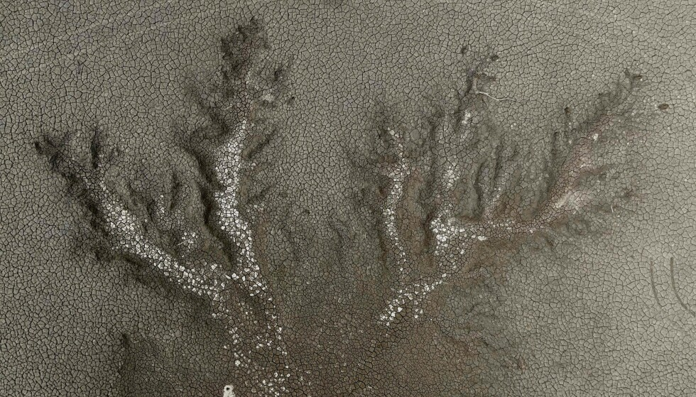 TØRKE: Tørke i Taiwan er en av grunnene for hvorfor verden står over for en stor mangel av mikrochips. Det påvirker nå flere store selskaper. Foto: Sam Yeh / AFP / NTB.