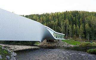 Saksøker arkitekt etter dotabbe
