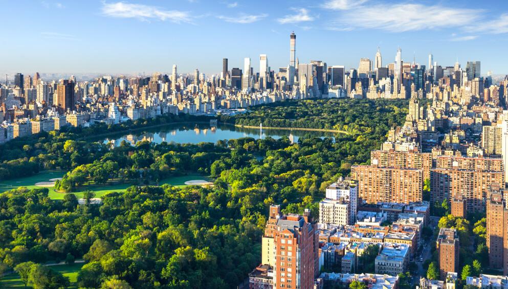NY DAG GRYR: Storbyen New York, med sine 8,6 millioner innbyggere, er i ferd med å våkne etter coronapandemien. Nå trues imidlertid tempoet i gjenåpninga av et uventet problem. Foto: Shutterstock / NTB