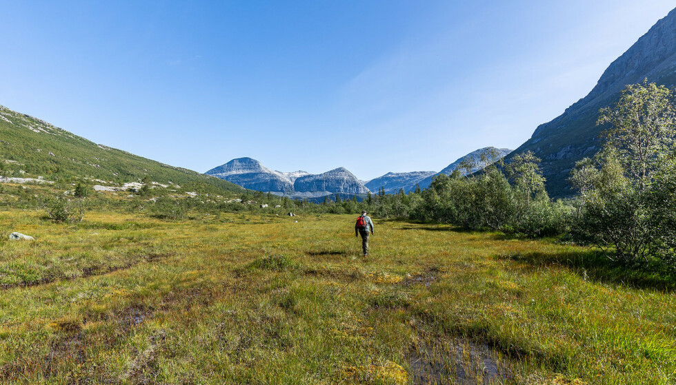 FOR FRILUFTSENTUSIASTER: Du skal være glad i natur og friluftsliv for å investere i denne eiendommen. Foto: Kathinka Herbst