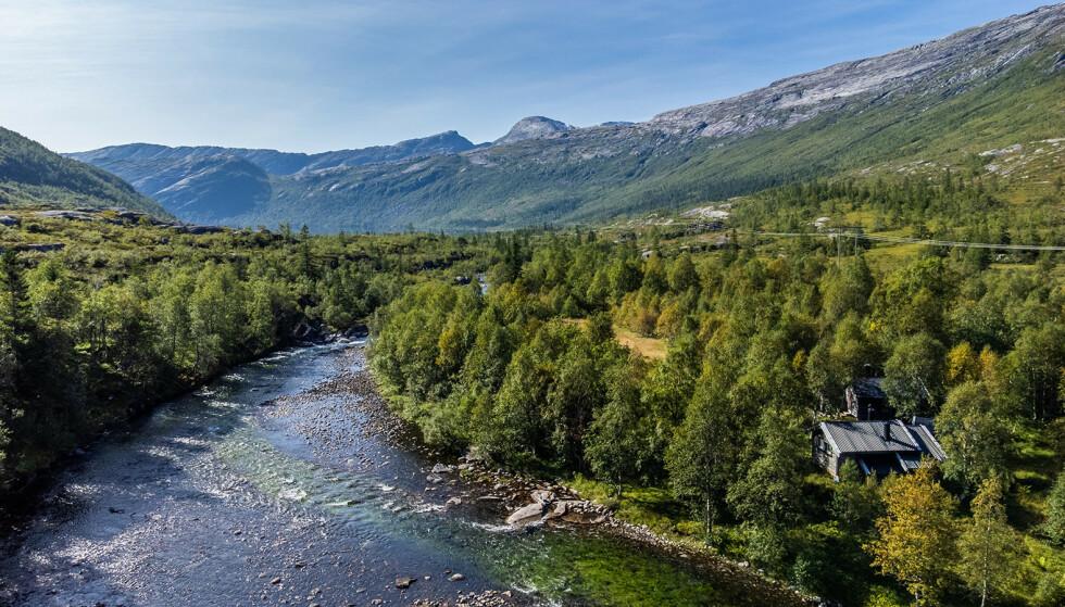 SKOGENS RO: Eiendommen ligger i Rana kommune. Foto: Kathinka Herbst