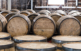 Trippel smell for bourbon whisky