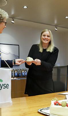 Image: Starter ny norsk kraftgigant