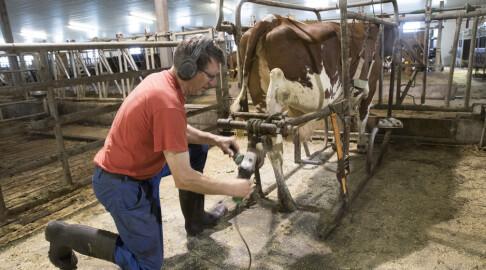Image: Hver bonde støttes med 600 000 kroner