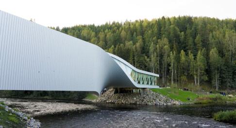 Image: Saksøker arkitekt etter dotabbe