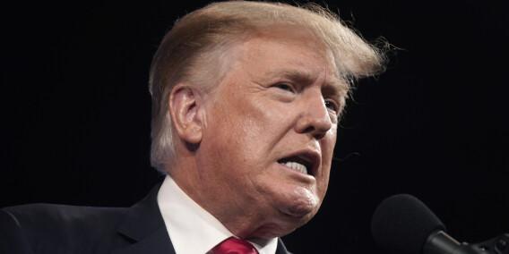 Image: Trump saksøker niese og storavis